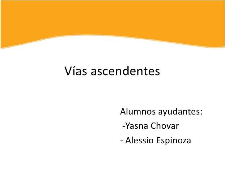 Vías ascendentes<br />Alumnos ayudantes:<br /> -YasnaChovar<br />- Alessio Espinoza<br />