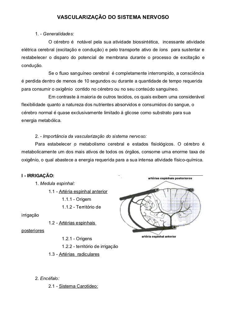 VASCULARIZAÇÃO DO SISTEMA NERVOSO      1. - Generalidades:              O cérebro é notável pela sua atividade biossintéti...