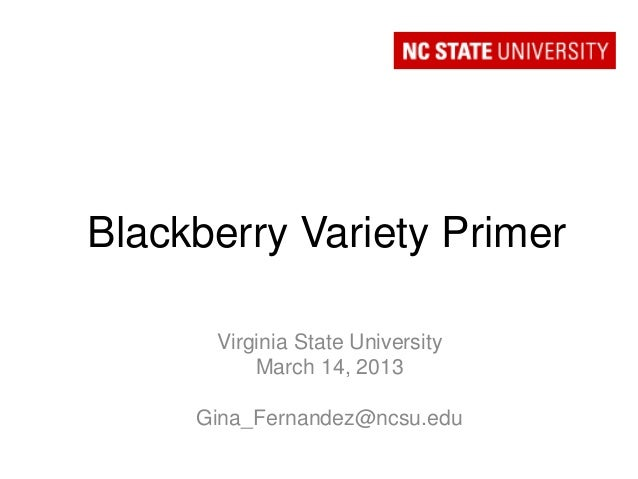 Blackberry Variety Primer