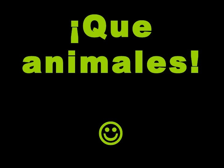 Vaya Animales