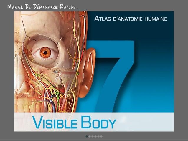 L'Atlas d'anatomie humaine de Visible Body 7 - iPhone