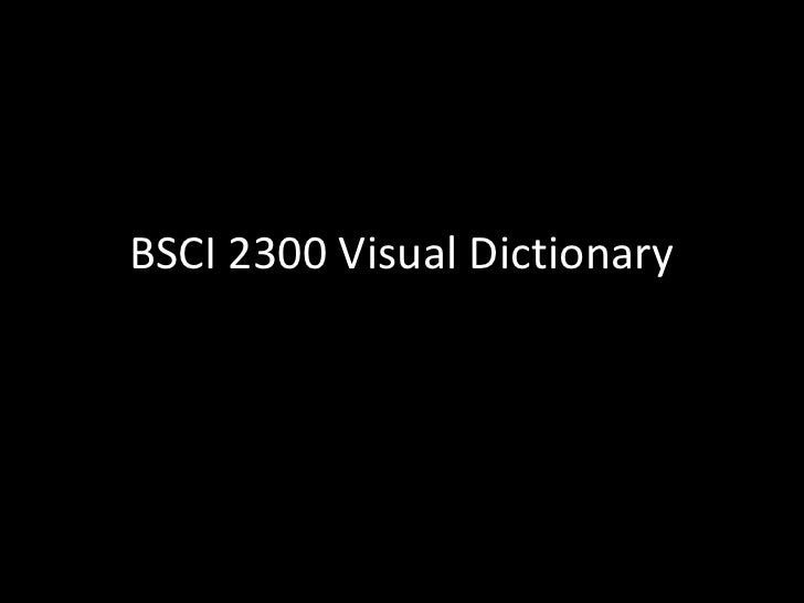 BSCI 2300 Visual Dictionary<br />