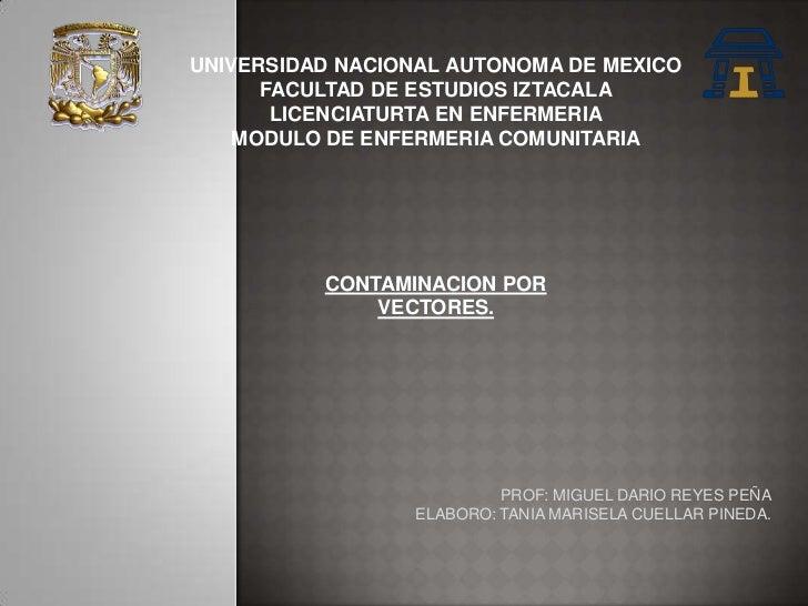 UNIVERSIDAD NACIONAL AUTONOMA DE MEXICO      FACULTAD DE ESTUDIOS IZTACALA       LICENCIATURTA EN ENFERMERIA    MODULO DE ...