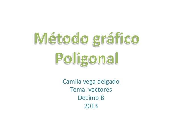 Camila vega delgado  Tema: vectores     Decimo B       2013