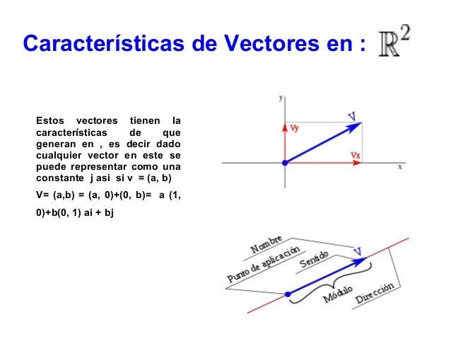Vectores r 2 y r3 y sus caracterisiticas for Cuales son las caracteristicas de un mural