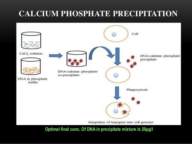 What Is Calcium At Room Temperature