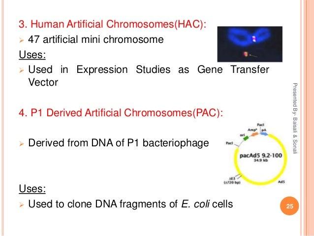 Charming puc8 plasmid vector pics
