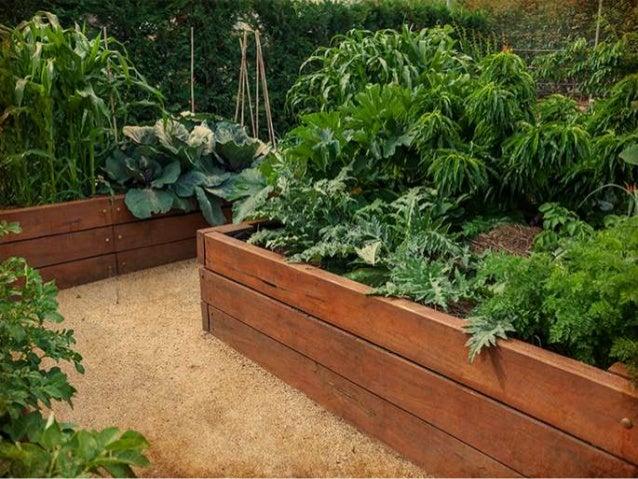 Vegetable garden design ideas for Suggested garden layout
