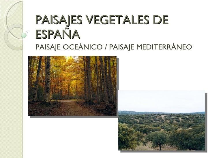 PAISAJES VEGETALES DE ESPAÑA PAISAJE OCEÁNICO / PAISAJE MEDITERRÁNEO
