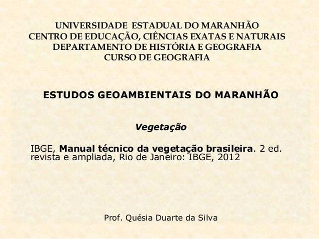 UNIVERSIDADE ESTADUAL DO MARANHÃO CENTRO DE EDUCAÇÃO, CIÊNCIAS EXATAS E NATURAIS DEPARTAMENTO DE HISTÓRIA E GEOGRAFIA CURS...