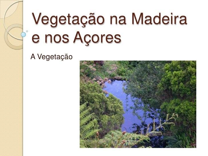 Vegetação na Madeira e nos Açores <br />A Vegetação<br />