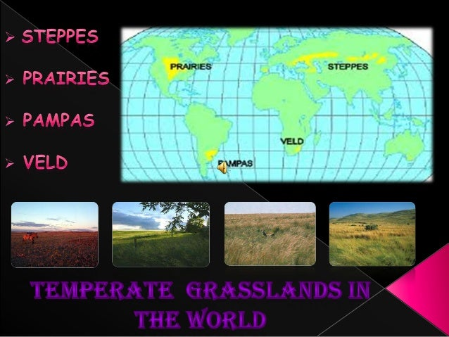 Location ClimateNatural vegetationWildlifeOccupationIndustryTransport
