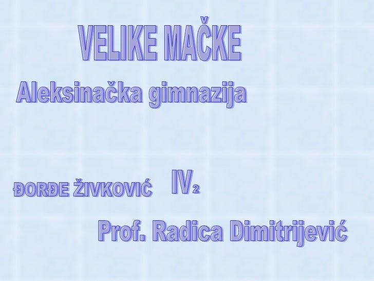 Velike mačke - Đorđe Živković - Radica Dimitrijević