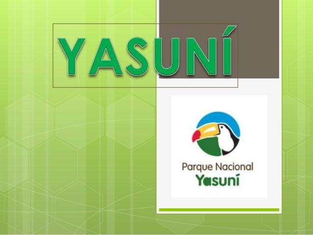 De acuerdo a estudios científicos, el Parque Yasuní ubicado en la Región amazónica ecuatoriana, en las provincias de Orell...