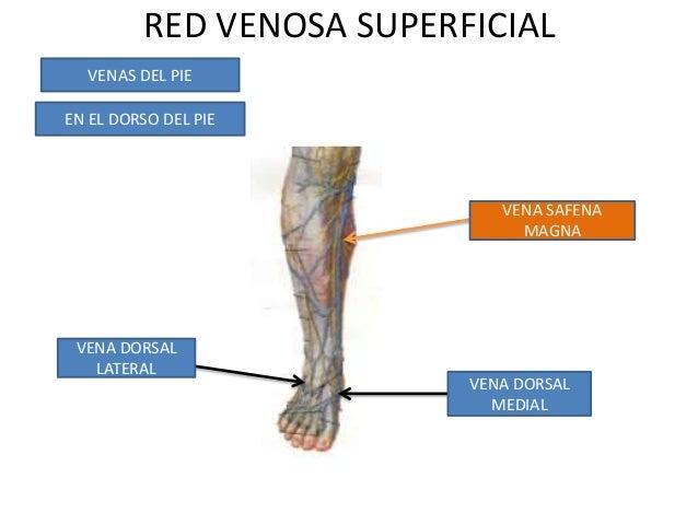 La trombosis de la arteria femoral la clínica