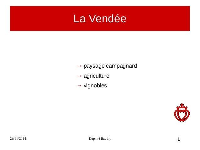 La Vendée  → paysage campagnard  → agriculture  → vignobles  26/11/2014 Daphné Baudry  1