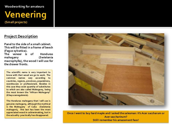 Woodworkingfor amateursVeneering(Small projects)<br />Project Description<br /> <br />Panel to the side of a small cabinet...