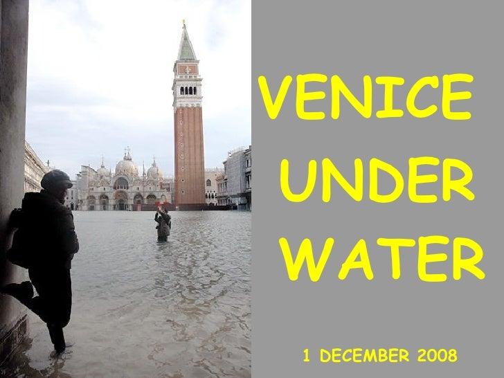 VENICE  1 DECEMBER 2008 UNDER WATER