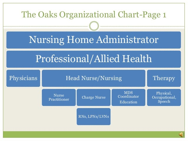 Organizational Structure For Nursing Home