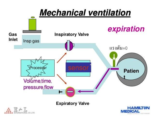 Expiratory Valve Ventilator Peep Expiratory Valve