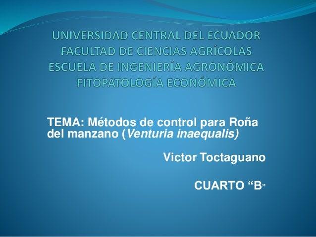 """TEMA: Métodos de control para Roña  del manzano (Venturia inaequalis)  Victor Toctaguano  CUARTO """"B"""""""