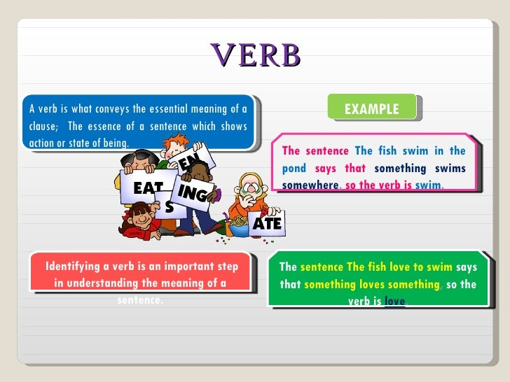 VERBA verb is what conveys the essential meaning of a               EXAMPLEclause; The essence of a sentence which showsac...