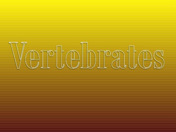 Veritbrates organisms