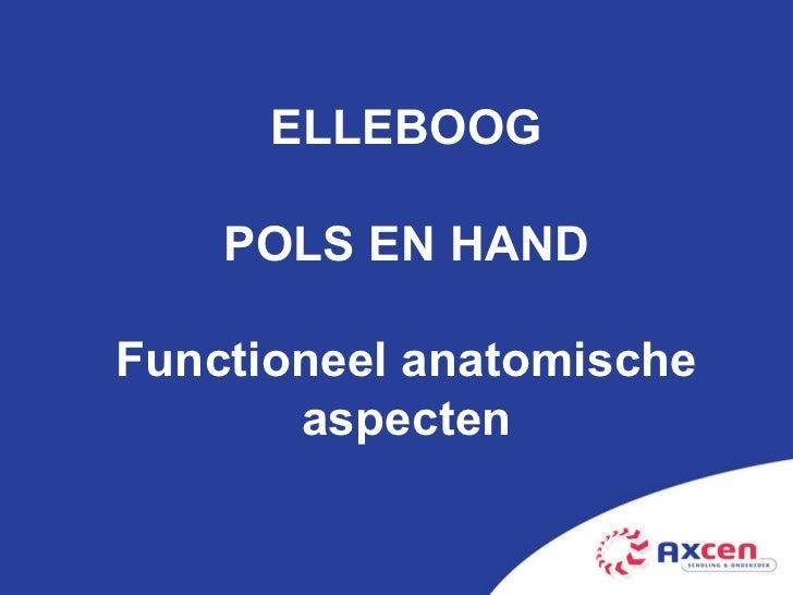 ELLEBOOG POLS EN HAND Functioneel anatomische aspecten