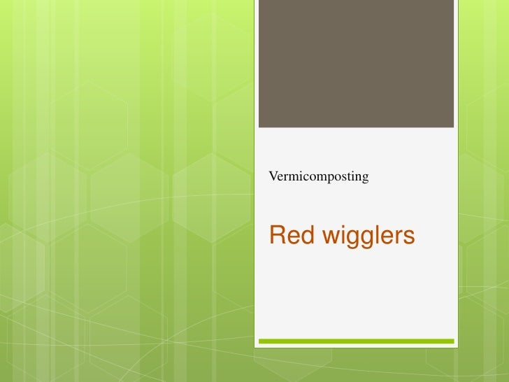 Vermicomposting<br />Red wigglers <br />