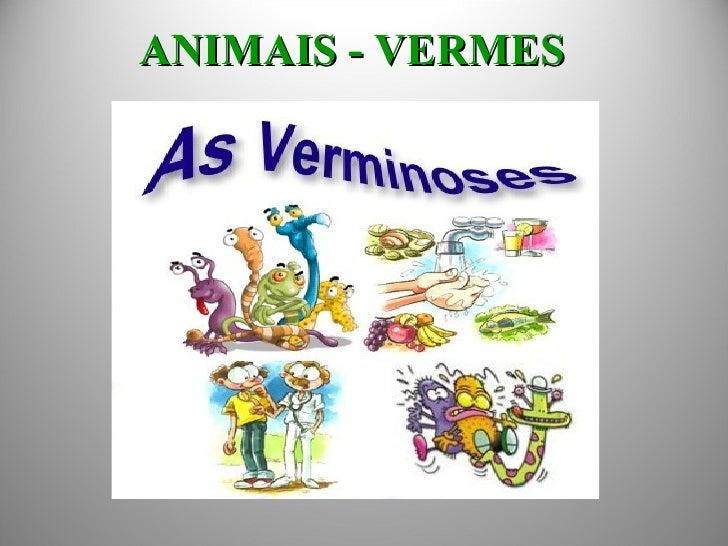ANIMAIS - VERMES
