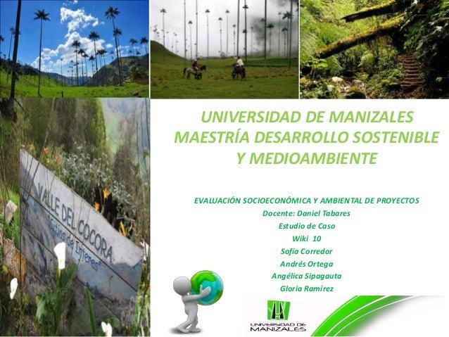 UNIVERSIDAD DE MANIZALES MAESTRÍA DESARROLLO SOSTENIBLE Y MEDIOAMBIENTE EVALUACIÓN SOCIOECONÓMICA Y AMBIENTAL DE PROYECTOS...