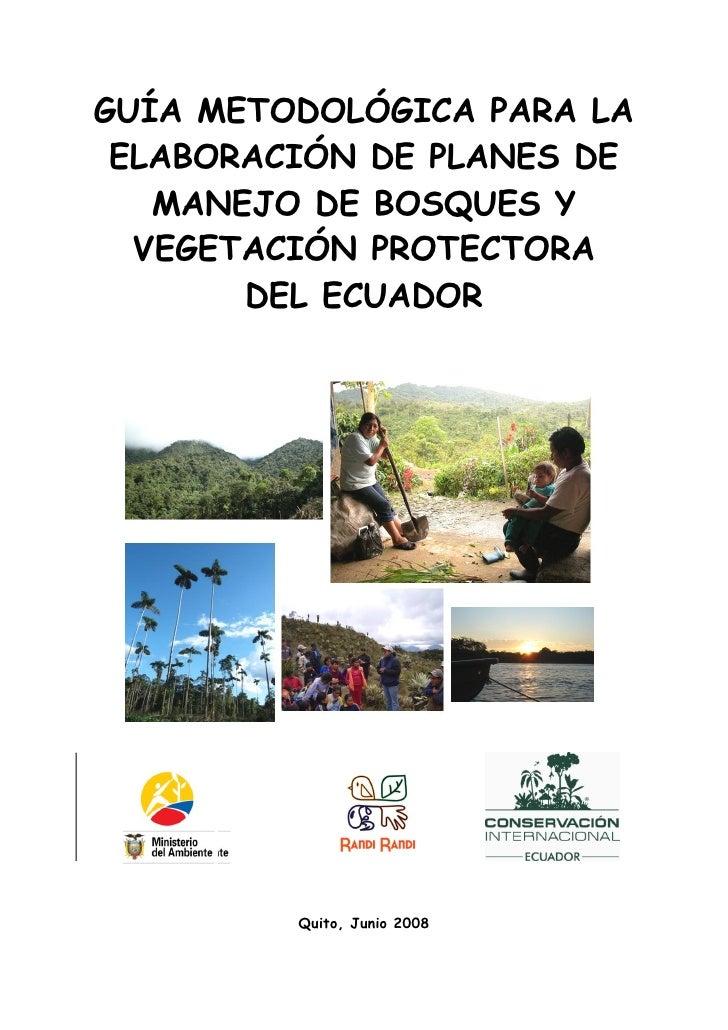 Guia para planes de manejo de bosques protectores