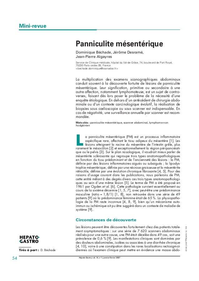Mini-revue Panniculite mésentérique Dominique Béchade, Jérôme Desramé, Jean-Pierre Algayres Service de Clinique médicale, ...