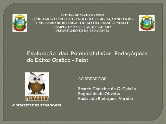 Exploração das Potencialidades Pedagógicas do Editor Gráfico - Paint ESTADO DE MATO GROSSO SECRETARIA CIÊNCIAS, TECNOLOGIA...