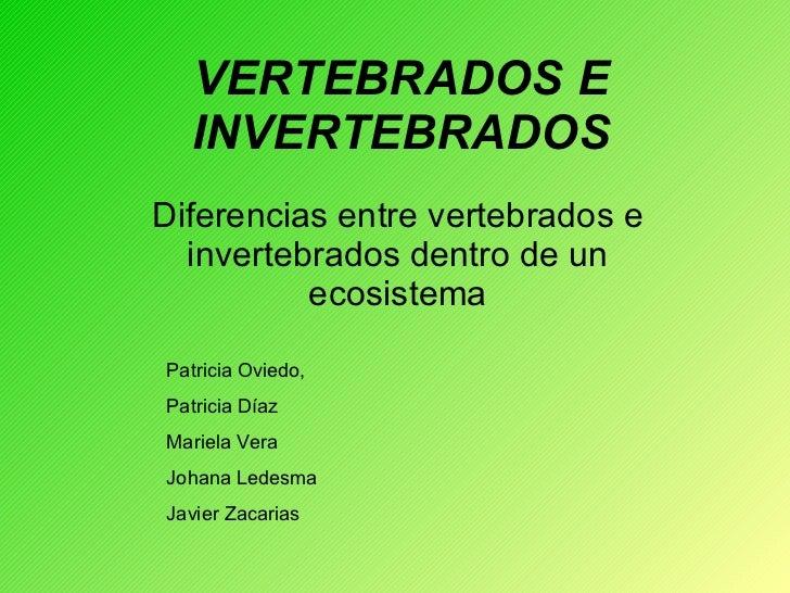 VERTEBRADOS E INVERTEBRADOS Diferencias entre vertebrados e invertebrados dentro de un ecosistema Patricia Oviedo, Patrici...