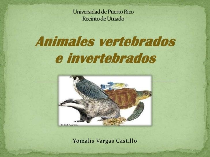 Animales vertebrados   e invertebrados     Yomalis Vargas Castillo