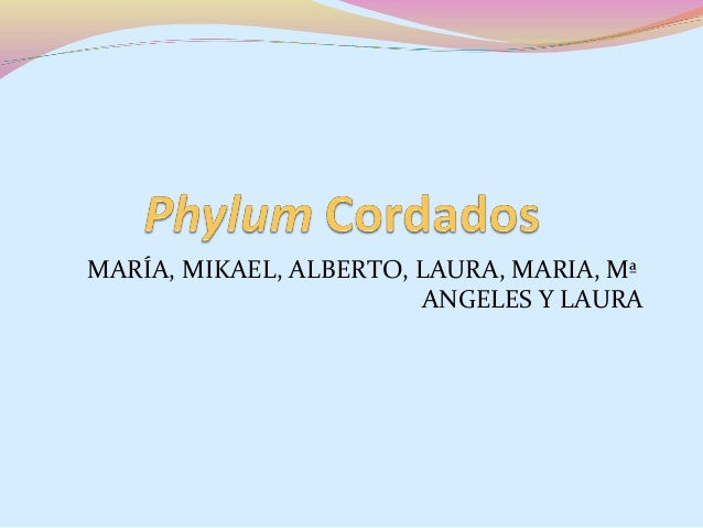 MARÍA, MIKAEL, ALBERTO, LAURA, MARIA, Mª ANGELES Y LAURA