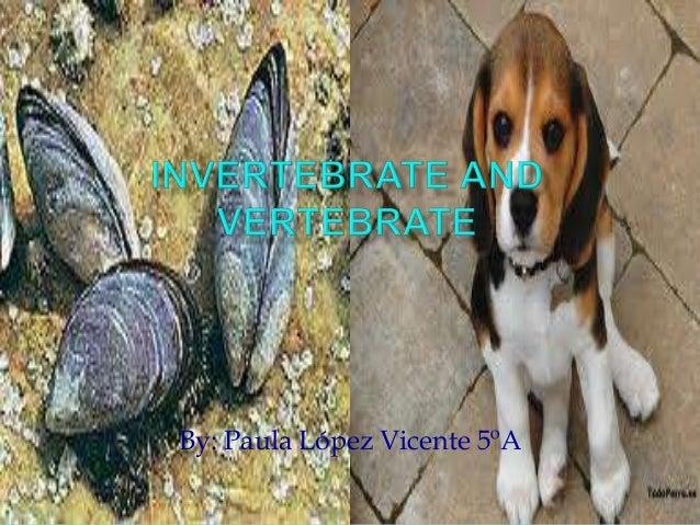 Vertebrate invertebrate-paula5 a