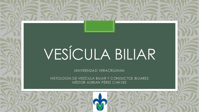 VESÍCULA BILIAR UNIVERSIDAD VERACRUZANA HISTOLOGÍA DE VESÍCULA BILIAR Y CONDUCTOS BILIARES NÉSTOR ADRIAN PÉREZ CHÁVEZ