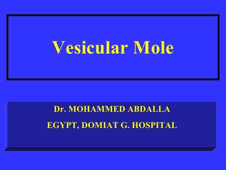 vesicular molle 2