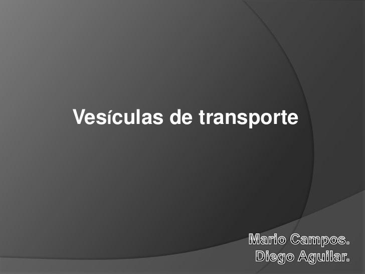 Vesículas de transporte