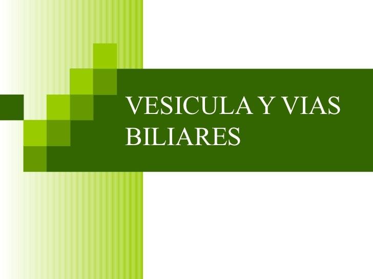 Vesicula Y Vias Biliares