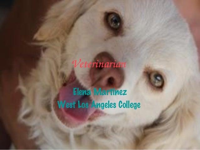 Veterinarian   Elena MartinezWest Los Angeles College