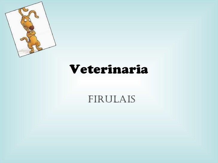 Veterinaria Firulais