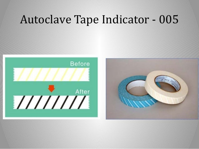 Veterinary Autoclave | Autoclave Supply