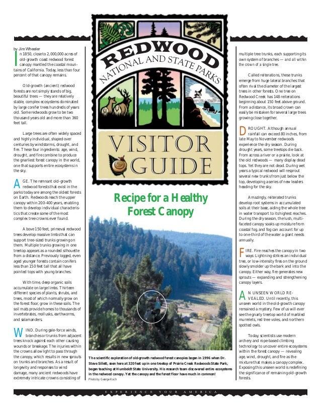 Recipe for a Healthy Forest Canopy E X P E R I E N C E Y O U R A M E R I C A by Jim Wheeler I n 1850, close to 2,000,000 a...