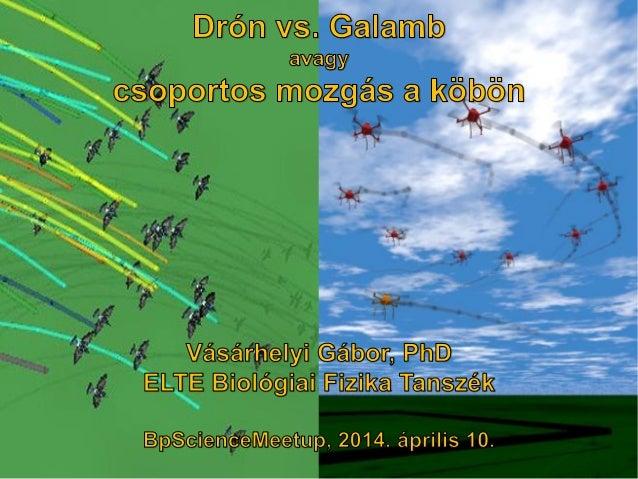BpSM 2014.04. - Vásárhelyi Gábor: Drón vs. galamb - csoportos mozgás a köbön