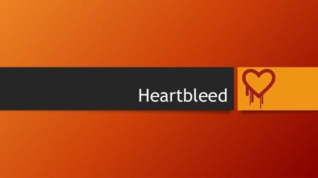Heartbleed by-danish amber