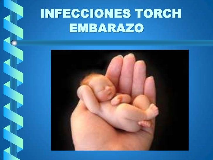 INFECCIONES TORCH EMBARAZO<br />