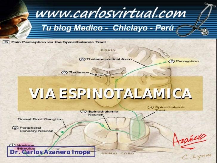 VIA ESPINOTALAMICA    Dr. Carlos Azañero InopeCarlos A. Azañero Inope                       Dr.